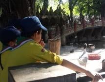 جولة الأشبال إلى حديقة الحيوانات الحامة 2015